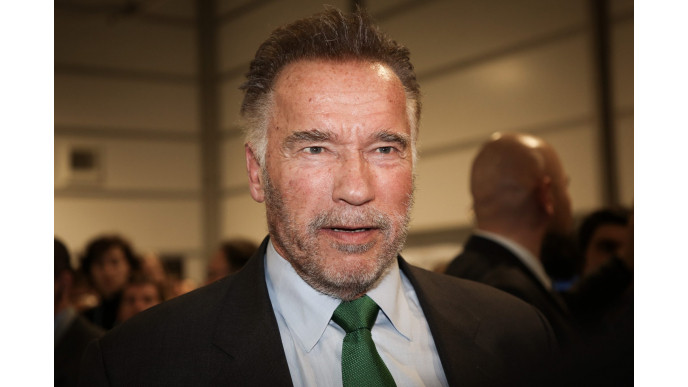 What would it actually be like to be Arnold Schwarzenegger's son-in-law?