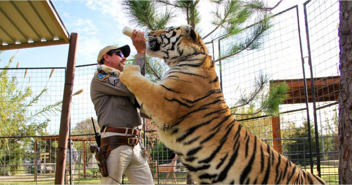 Tiger King: new episode details revealed and it's not about Joe Exotic